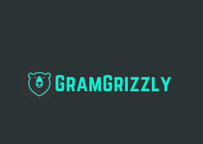 GramGrizzly Case Study